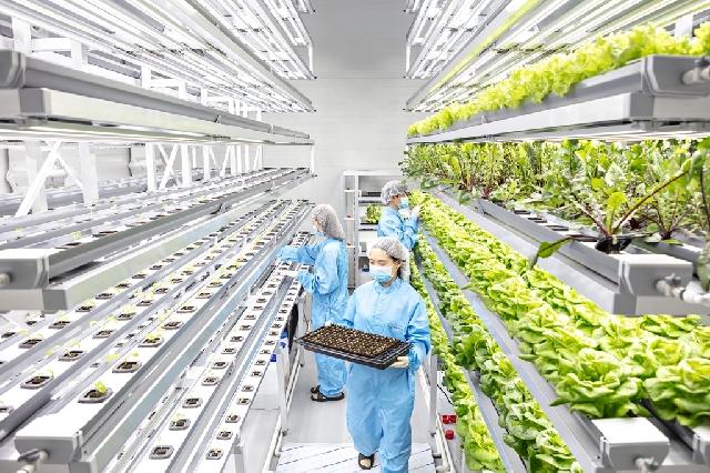 [2020 전문대 수시/연암대학교] 국내 최고의 차세대농업기술 선도 대학