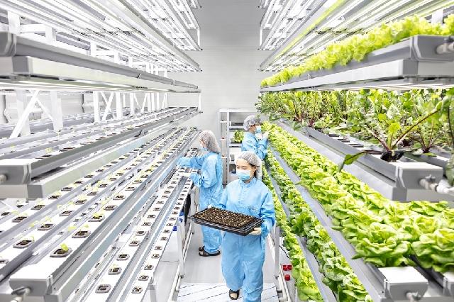 연암대학교, 2019년 농대 영농창업특성화사업 교육운영 평가3년 연속 최우수'S등급'획득